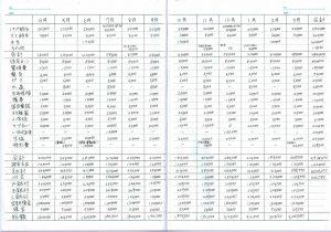 あきの家計簿(年間の家計簿)記入例