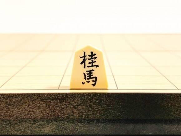 ワイ「スッ」へそに桂馬を置く 藤井聡太「あっ、ぼくの乳首が両取り……」 ワイ「さあどうするんや?」