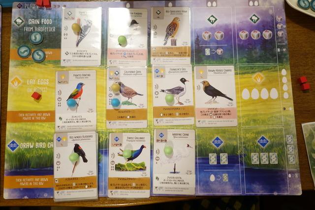 鳥カードが計10枚並んでいる