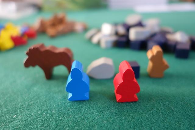 バイキング駒の写真