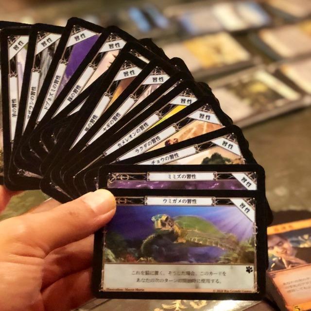 習性カード