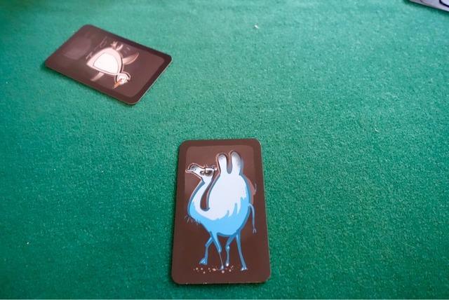 ドデリドの青いラクダカードと白いペンギンカードの写真