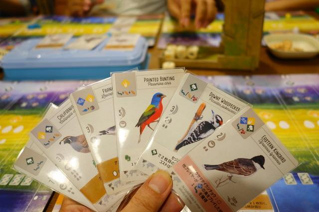 6枚の鳥カードを手に持っている私