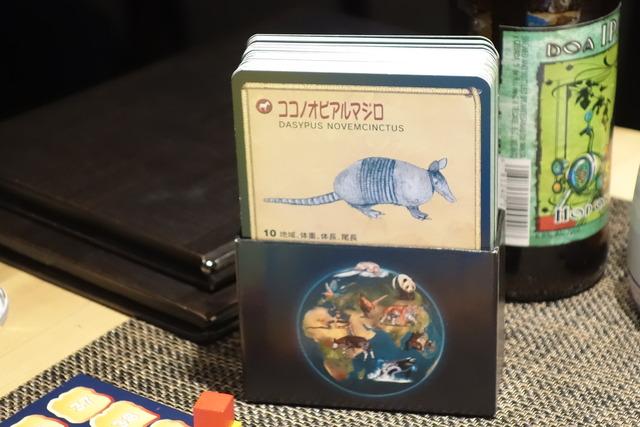 ココノオビアルマジロのカード上部