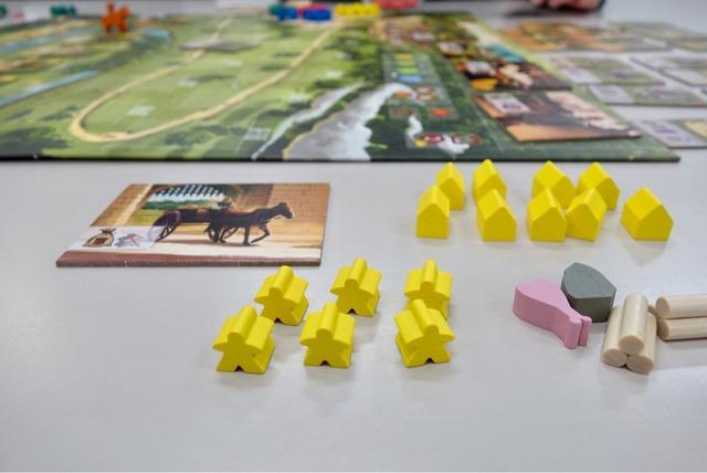 プレイヤーに配られた駒などの写真