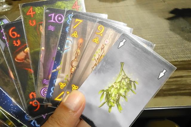 植物が描かれたカードの写真