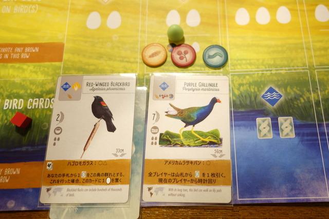 水辺に2枚目の鳥カードを置いたところ