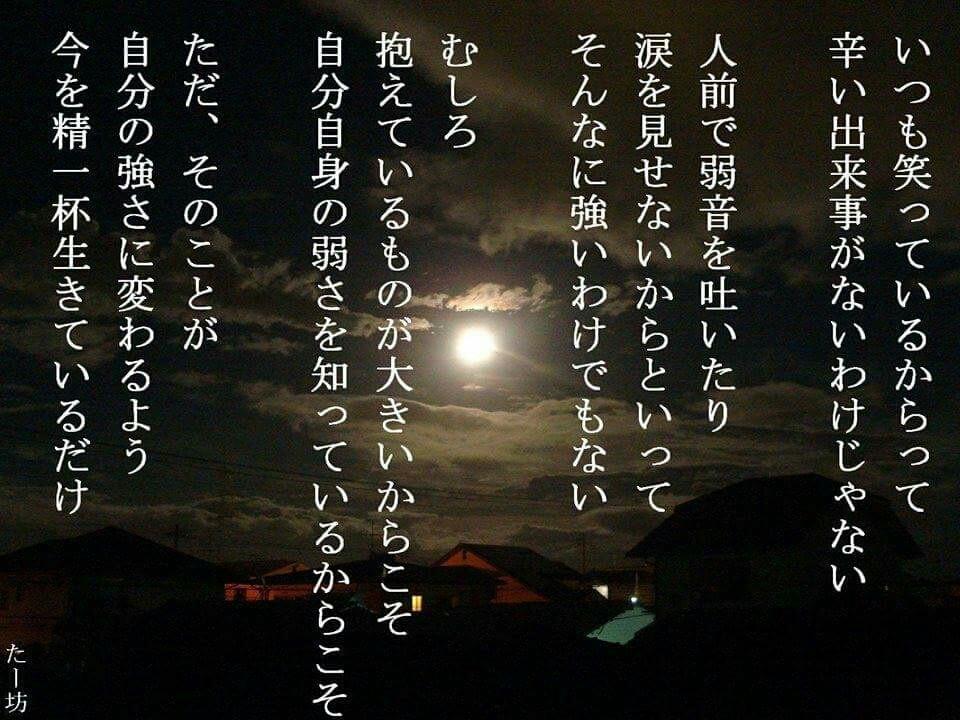 [画像:7647ec0d.jpg]