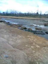 多摩川川原