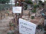ゼルコバへの道