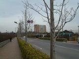 新昭和通り1