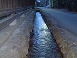 諏訪神社湧き水2