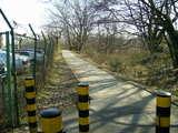 多摩川遊歩道2