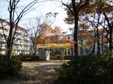 田中町団地何公園
