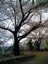 駒方神社3