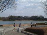 マラソン水鳥の池
