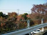奥多摩街道旧道から田中町団地を見る