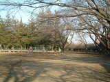 堀向公園2