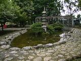 昭和公園15