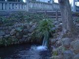 諏訪神社湧き水
