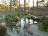 中福生公園7