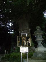 熊野神社5