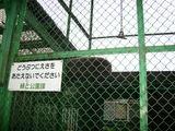 昭和公園4