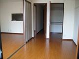 モルフォ室内7