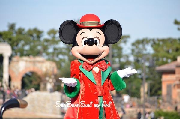 2015 クリスマス2 257