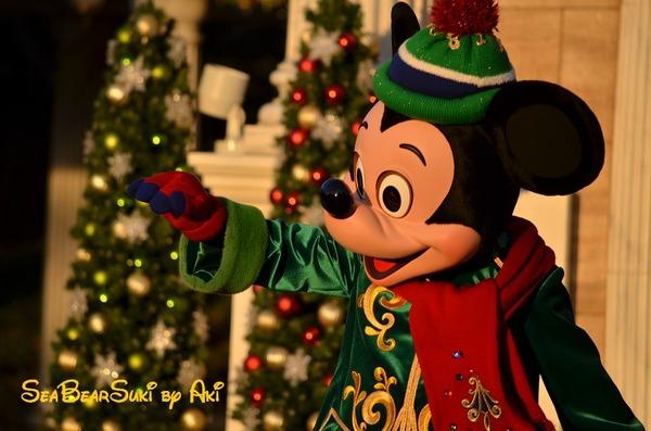 2014クリスマス4 801