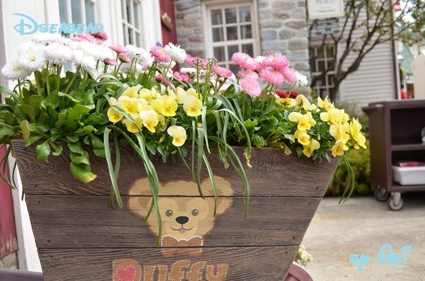 4月春熊インパ5 066