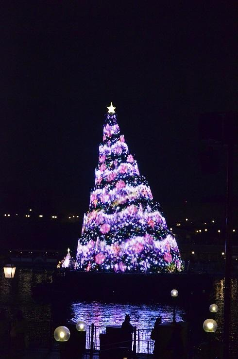 2018クリスマス2 697