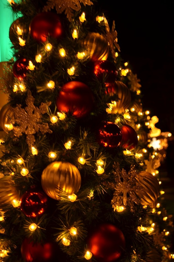 2014クリスマス4 978