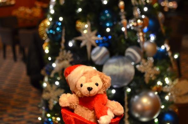 2016クリスマス4 557