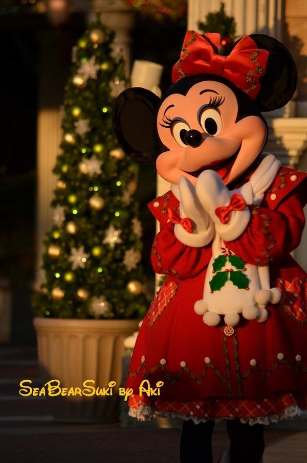 2014クリスマス4 814