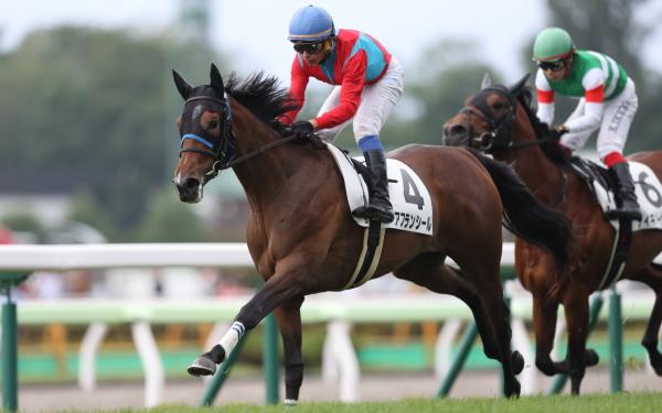 アフランシール 2歳新馬