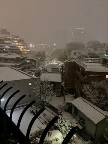 雪 - 1 (1)