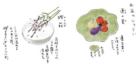 20130812_hirota_2