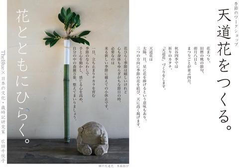 16SHOSHIKI天道花 (1)