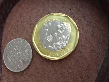 sd_coin