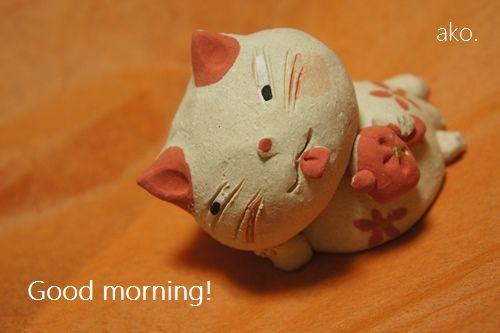 ○猫DSC06061 - コピー