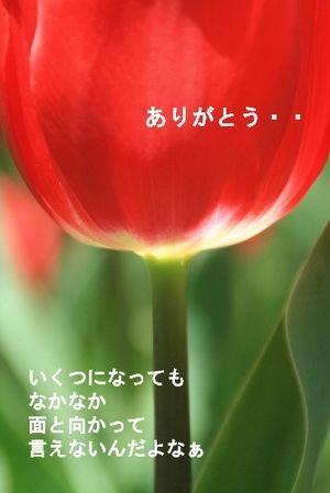 Img_9827
