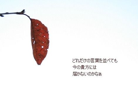 Img_6275_2
