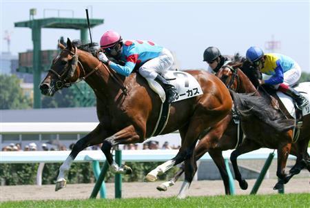 【競馬】モーリス全弟・ルーカス、アメリカでTDNライジングスターに認定される