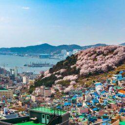 韓国人「韓国第2の都市釜山の美しい日常風景をご覧ください」