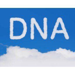 【韓国の反応】韓国人「IQの高い韓国人が非論理的なのはDNAのせいか?教育のせいか?」