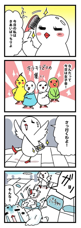 4koma_manga_josikai_ddojidori-min