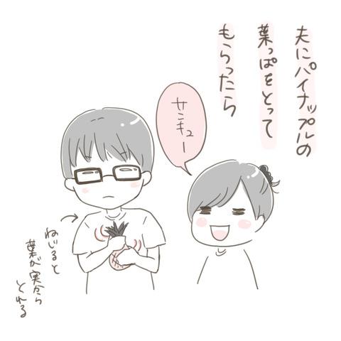 絵日記20180527パイナップル