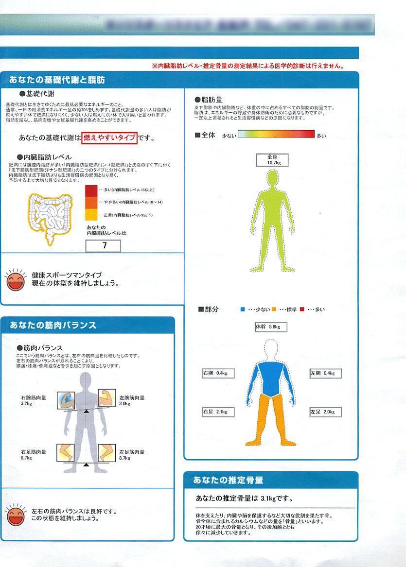 脂肪 タニタ レベル 内臓