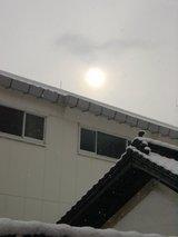 白牡丹の屋根と2月の太陽